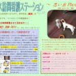 thumbnail of 5月号(2019) No.32